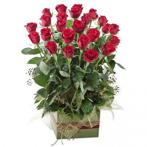 2 Dozen Rose Garden